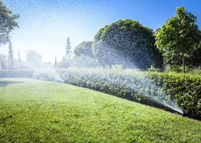 Irrigation of the garden grass with sprinkler system